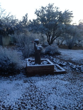 I was so surprised to wake up on New Year's Day to snow!